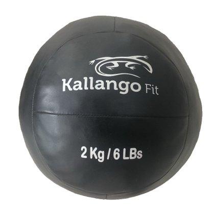 Wall Ball Basic 2kg Kallango